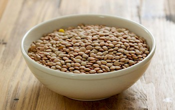 Lentil - calories, nutrition, weight